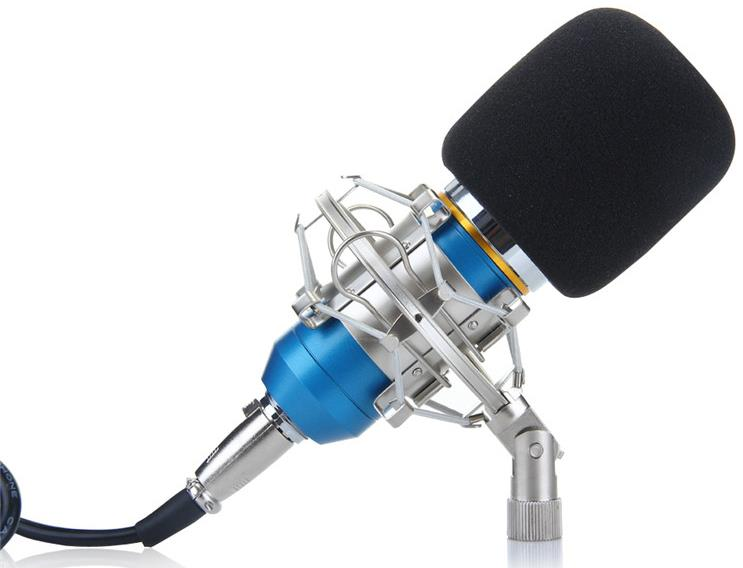Floureon BM-800 Condenser Microphone w/ Shockmount