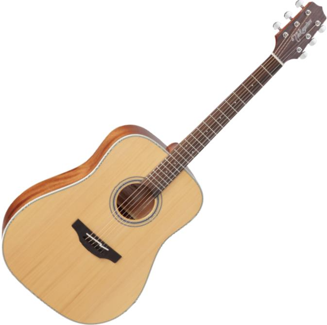 Takamine GD20 6 String Acoustic Guitar