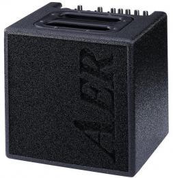 AER Alpha 40-Watt Acoustic Guitar Combo Amp
