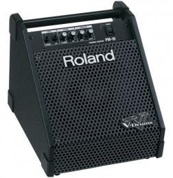 Roland PM-10 Drum Amp