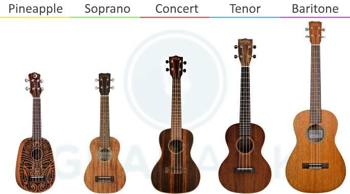 The Different Ukulele Sizes Explained Gearank