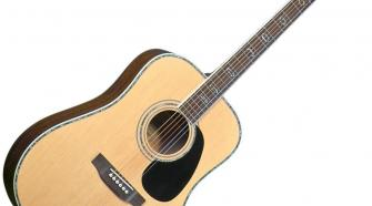 Blueridge BR-70 Acoustic Guitar