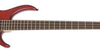 Epiphone Toby Deluxe IV 4-String Bass Guitar