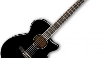 Ibanez AEG10II Acoustic-Electric Guitar