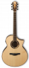 Ibanez AEW51 6 String Acoustic-Electric Guitar