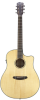 Breedlove Discovery Dreadnought CE 6 String Acoustic-Electric Guitar