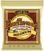 Ernie Ball 2002 Earthwood 80/20 Bronze Medium Acoustic Guitar Strings (Medium)