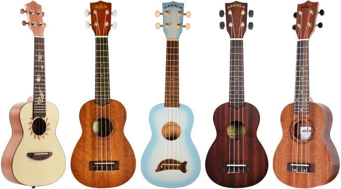 Learn about ukuleles for beginners